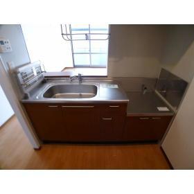 サンヒルズ 203号室のキッチン