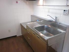 ライブ・トピア寺町 501号室のキッチン