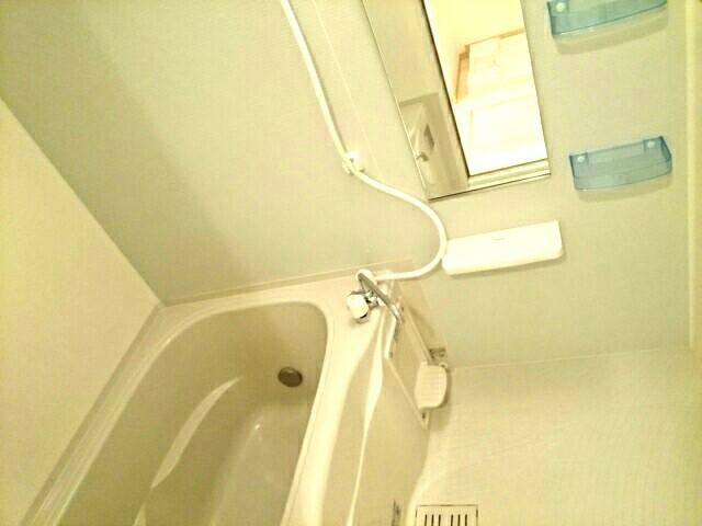 スリールダンジュⅡ 02040号室の風呂