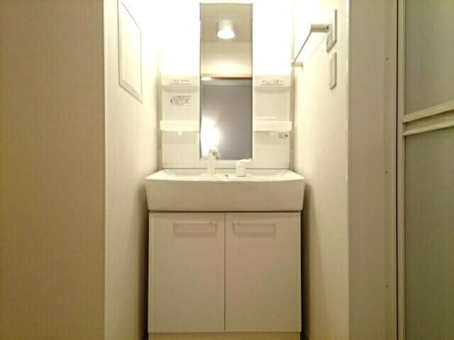 スリールダンジュⅡ 02040号室の洗面所