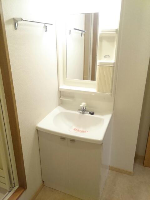 ロジュマン本郷B棟 01010号室の洗面所