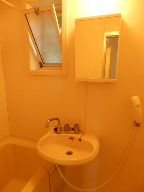 シルクハウス 102号室の洗面所