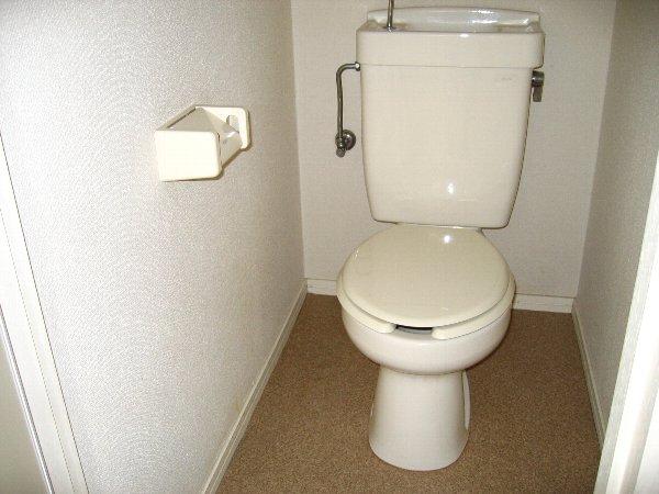 プラザタキ 203号室のトイレ