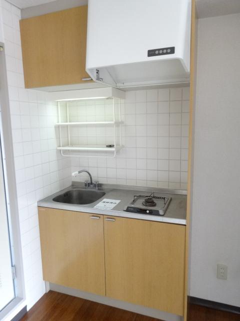 グリーンヒルズ 207号室のキッチン