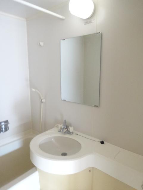 グリーンヒルズ 207号室の洗面所