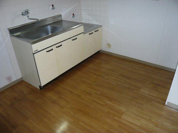 ロイヤルハイツA金杉 203号室のキッチン