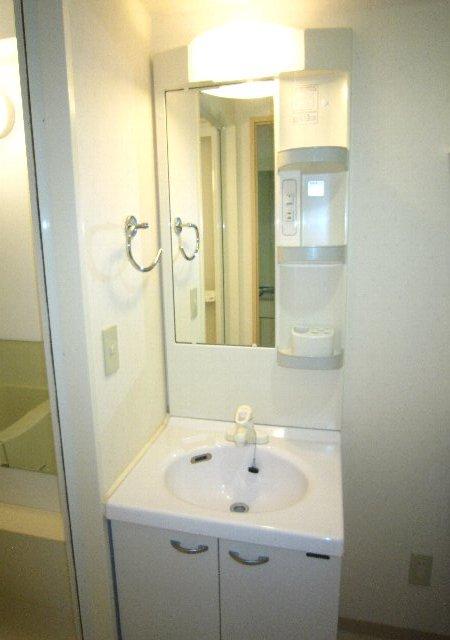 らふぃね壱番館 202号室の洗面所