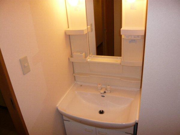 フォンテーヌ芝山 603号室の洗面所