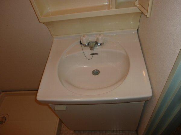 藤コーポE棟 105号室の洗面所