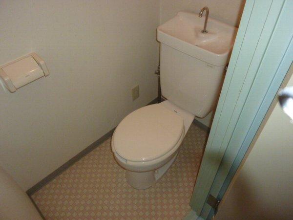藤コーポE棟 105号室のトイレ