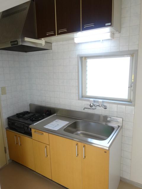 タウンコート馬込沢 203号室のキッチン