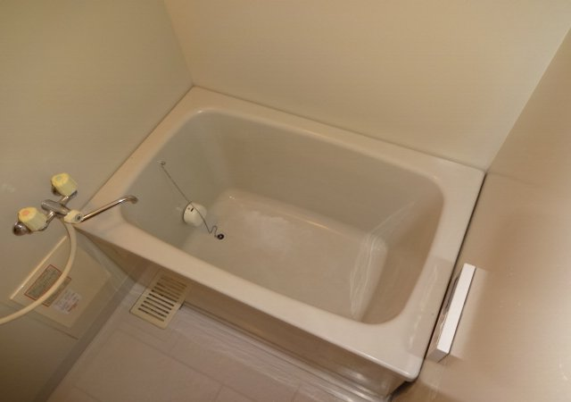 サンダイヤコーポ 202号室の風呂