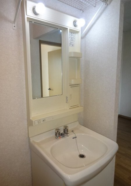 サンダイヤコーポ 205号室の洗面所