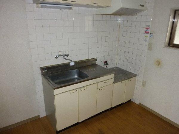 ラフォーレハイツW-3 103号室のキッチン