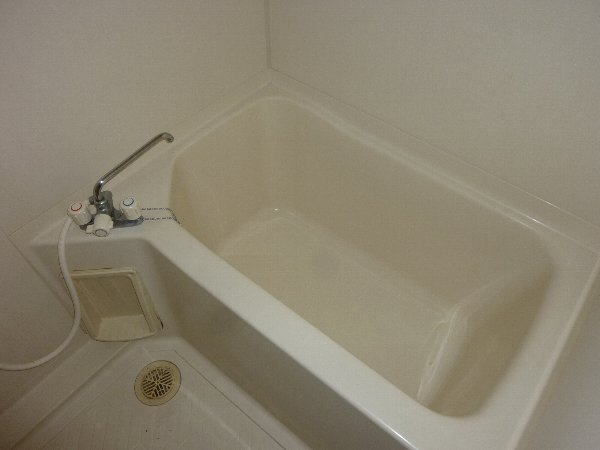 ラフォーレハイツW-3 103号室の風呂