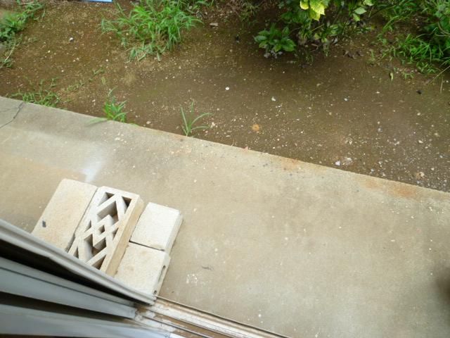 メゾンカンコー 106号室の庭