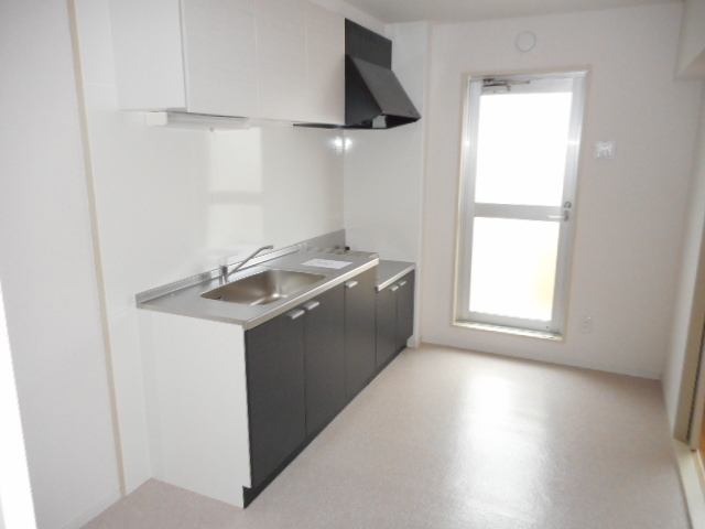 キャストロ鎌ヶ谷 203号室のキッチン