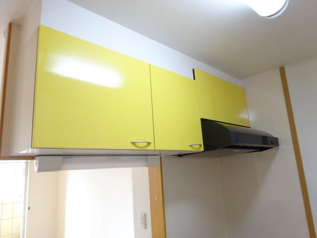 ルミナス・M 02030号室の収納