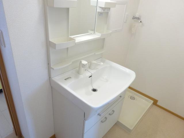 ルミナス・M 02030号室の洗面所