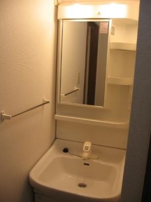 メゾンフロレスタ 02030号室の洗面所