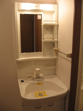 フロ-ラリア 01010号室の洗面所