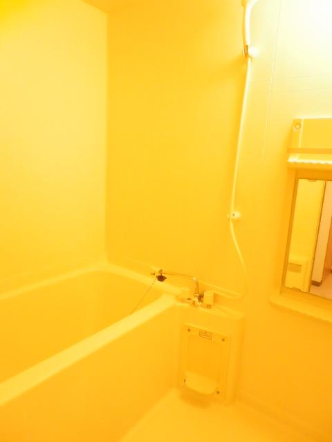 ロジュマン本郷B棟 02010号室の風呂