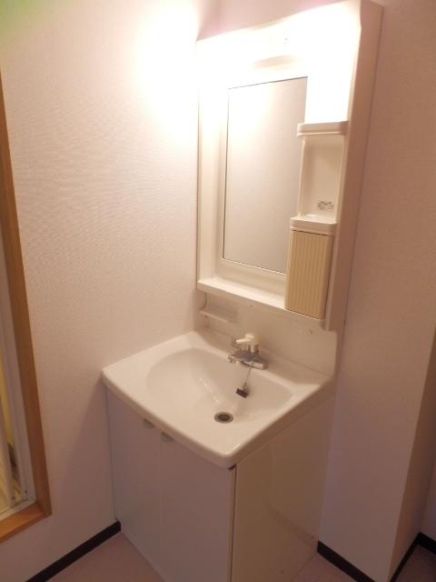 ロジュマン本郷B棟 02010号室の洗面所