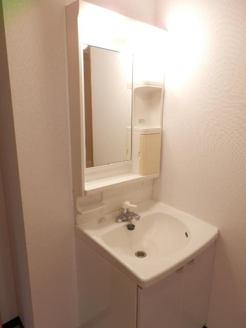 ロジュマン本郷B棟 02020号室の洗面所