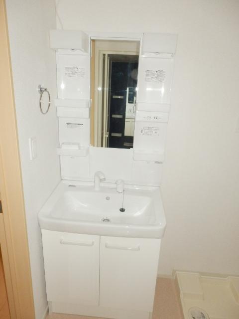 アムールB 02010号室の洗面所