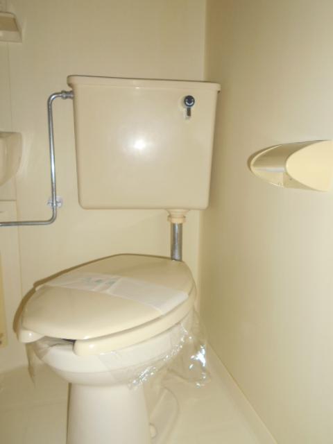 ジョイフル大和南 107号室のトイレ