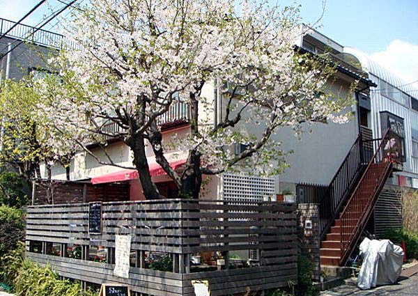 春駒荘外観写真