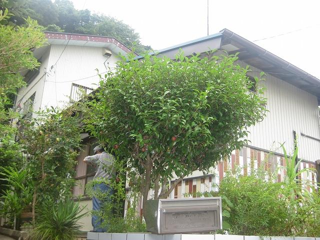 鈴木様戸建て2外観写真