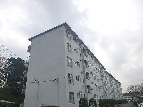 和泉町団地5号棟外観写真