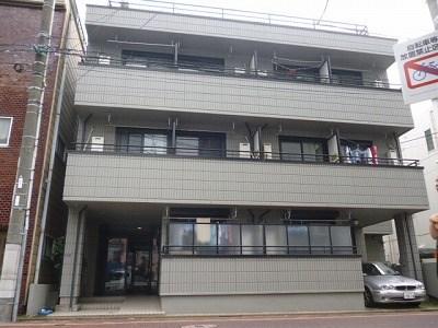 ドルフ武蔵新田外観写真