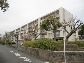 多摩川住宅ハー10号棟外観写真